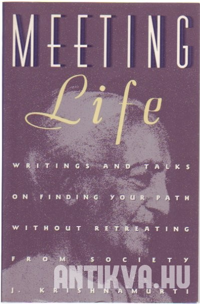 Meeting Life. Writings and Talks on Finding Your Path Without Retreating from Society