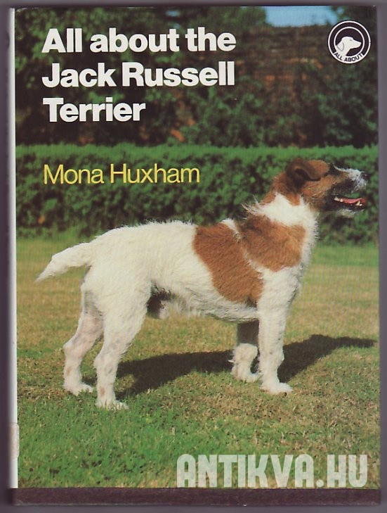 All About the Jack Russell Terrier
