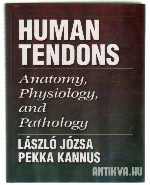 Human Tendons: Anatomy, Physiology, and Pathology