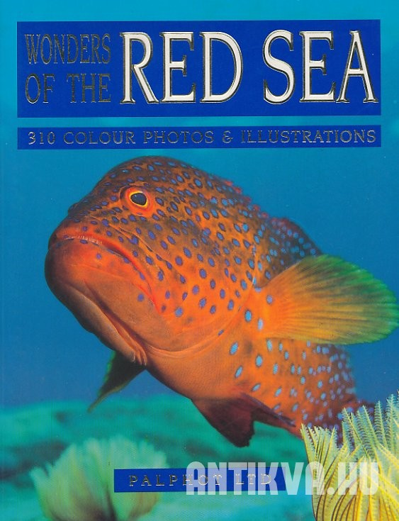 Wonders of the Red Sea