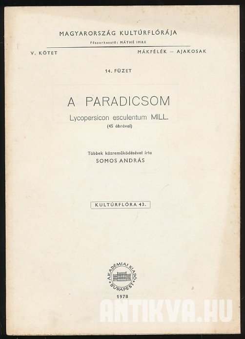 A paradicsom. Lycopersicon esculentum MILL