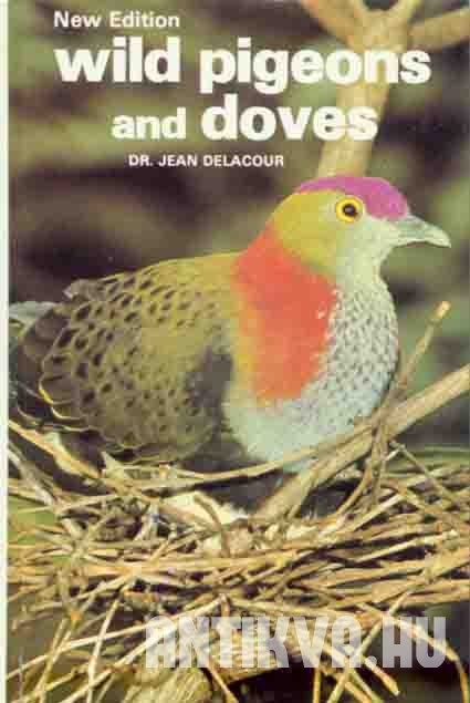Wild Pigeons and Doves