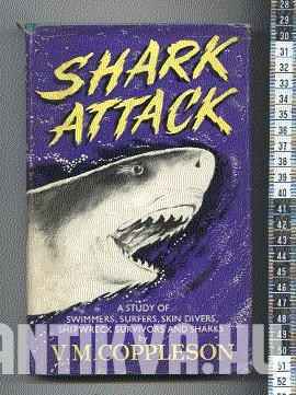Shark Attack - A study of Simmers, Surfers, Skin Divers, Shipwreck Survivors and Sharks