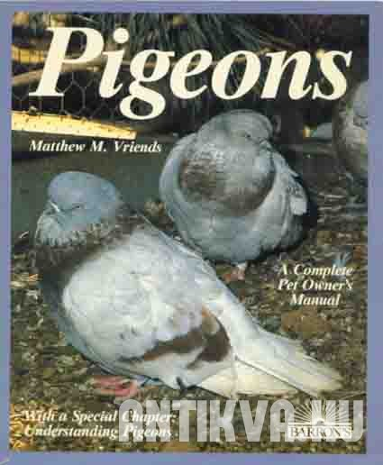 Pigeons. Everything About Purchase, Care, Management, Diet, Diseases, and Behavior of Pigeons.