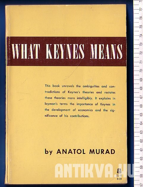 What Keynes Means. A Critical Clarification of the Economic Theories of John Maynard Keynes
